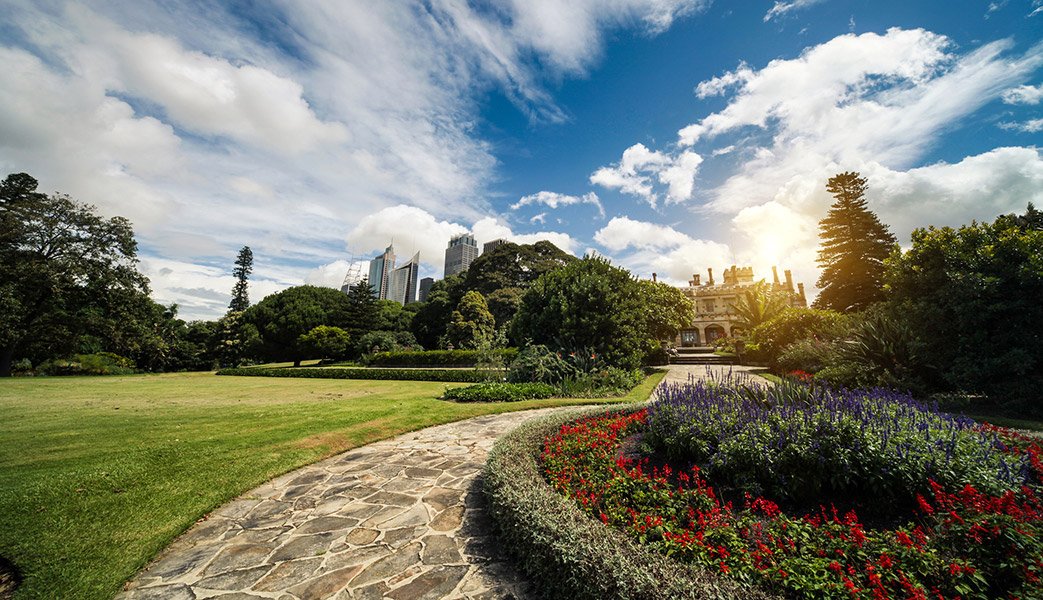 sydney-royal-botanic-gardens-sunset-1043
