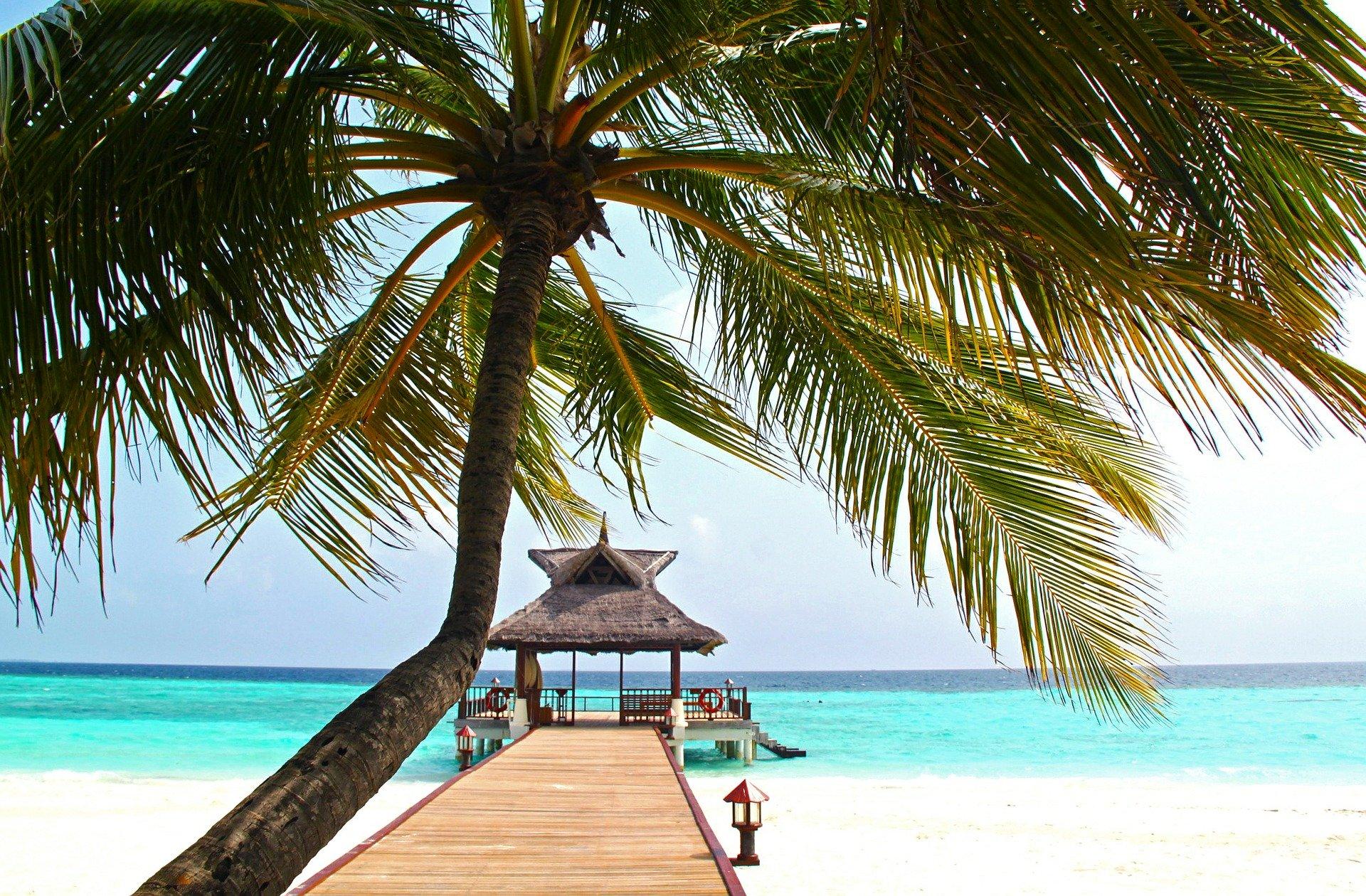 beach-612553_1920.jpg